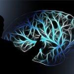 認知的不協和理論とは -実験結果から恋愛テクニックまで解説!